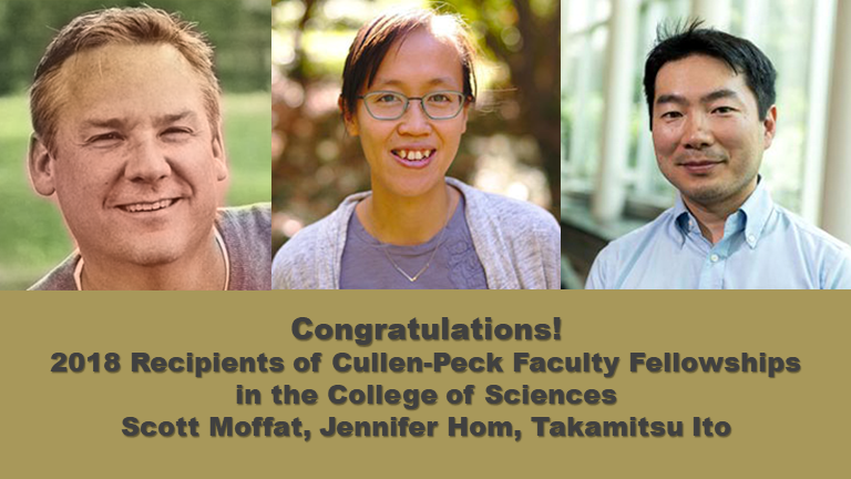 2018 Cullen-Peck Fellows